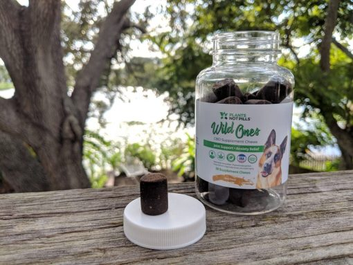 organica cbd treats for pets wild ones