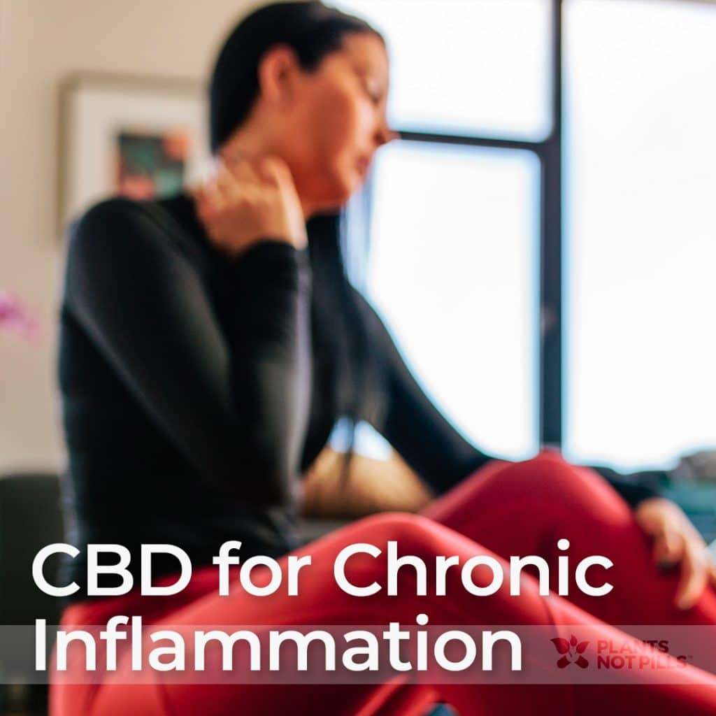 using cbd for inflammation
